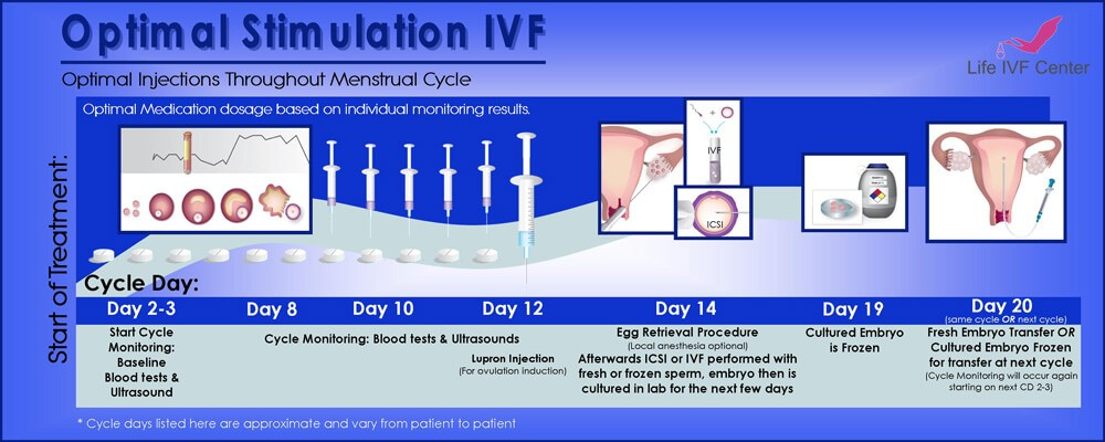 Optimal Stimulation IVF